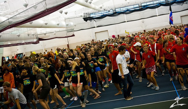 Une compétition de Cupid Shuffle avec des centaines de participants.