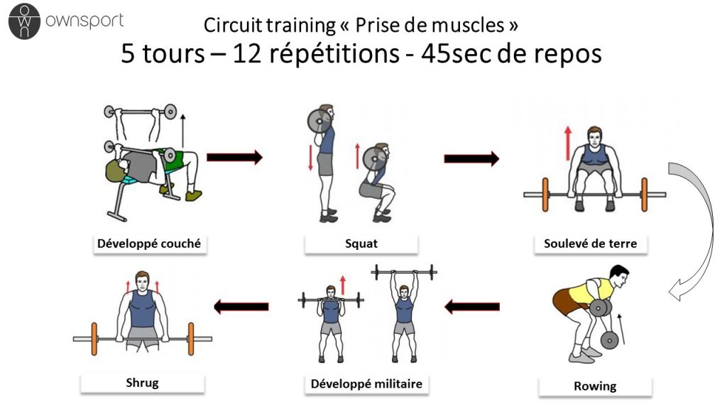 Circuit training pour transformer son corps