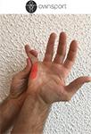 Exercices de stretching du fléchisseur du petit doigt