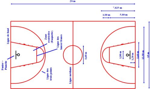 Entraineur de Basketball : le terrain