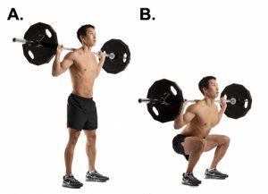 Muscler les fesses : le squat