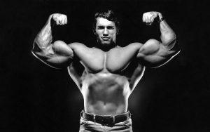 Activités sportives : musculation