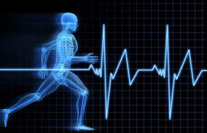 Programme d'entrainement : préparation physique