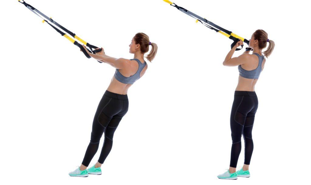 Biceps au TRX
