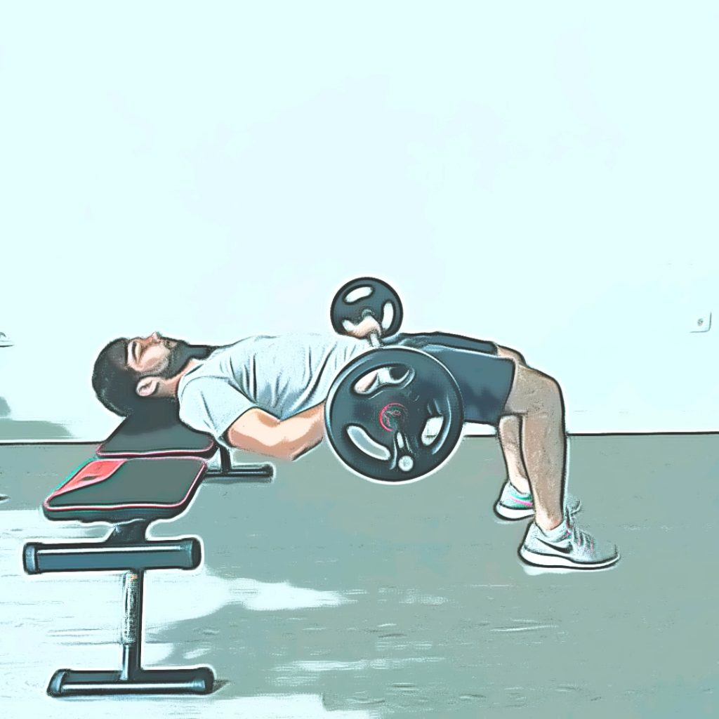 Hip thrust : relevé de bassin