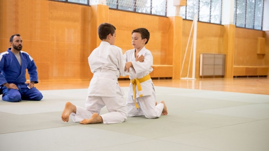 BPJEPS Judo Jujitsu