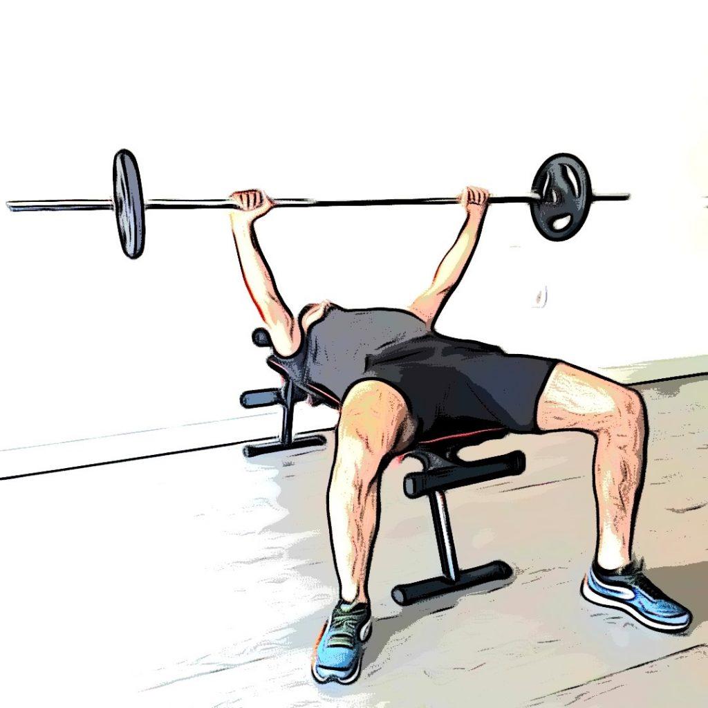 Exercices de musculation : développé couché