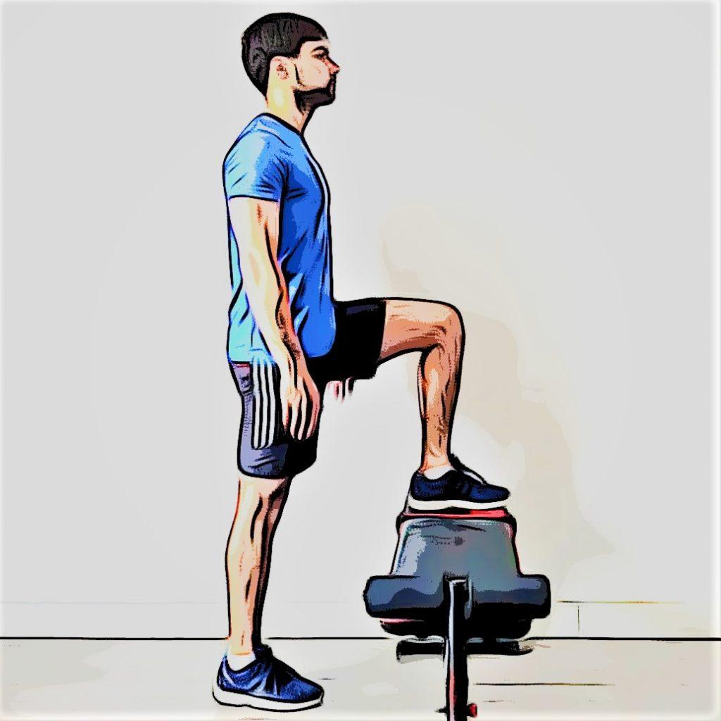 step up avec un banc ou une plyo box pour renforcer vos quadriceps