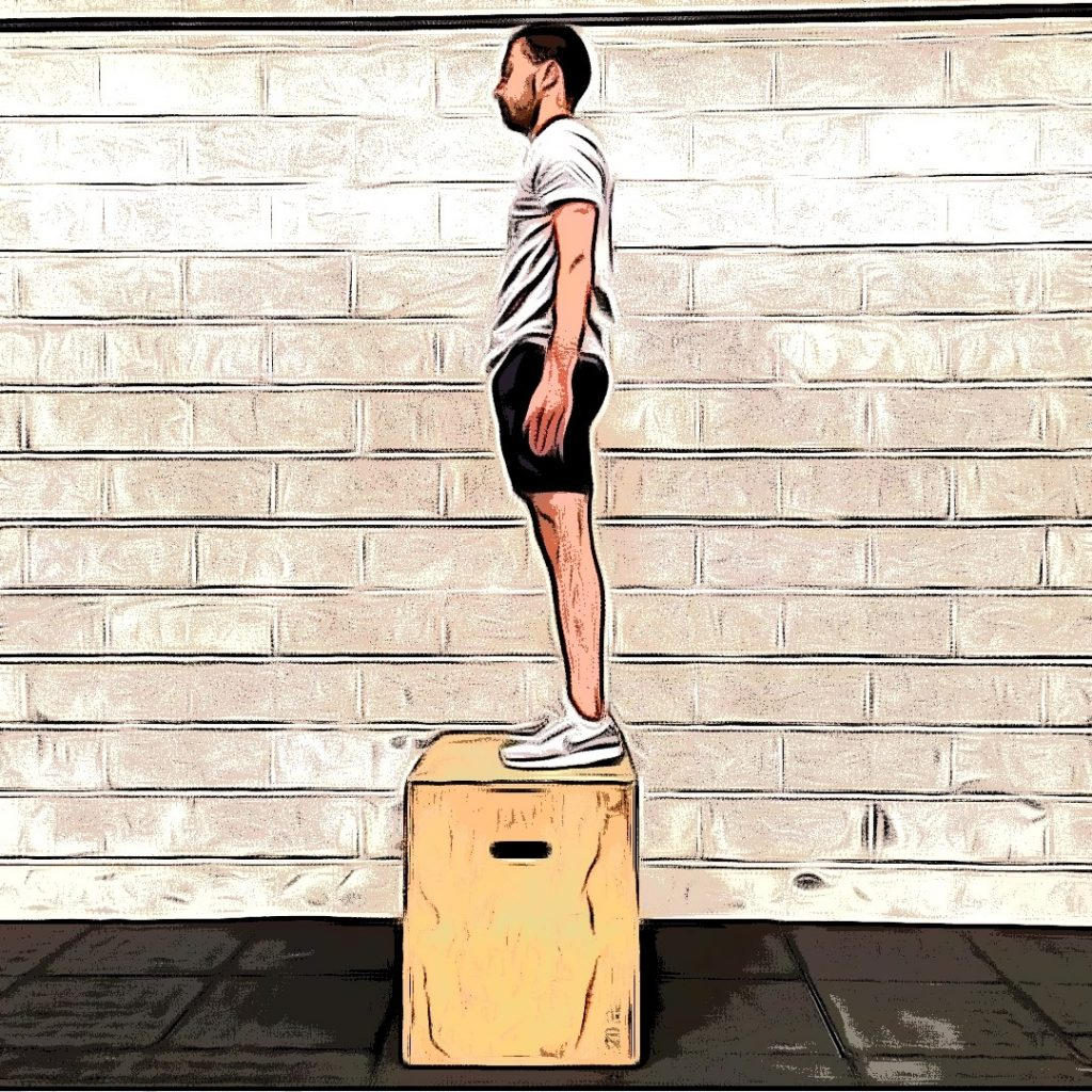Box jumps :  extension complète sur box